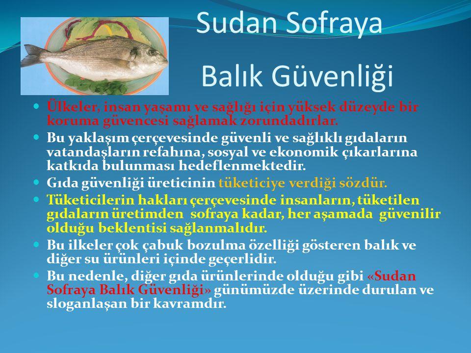 Sudan Sofraya Balık Güvenliği
