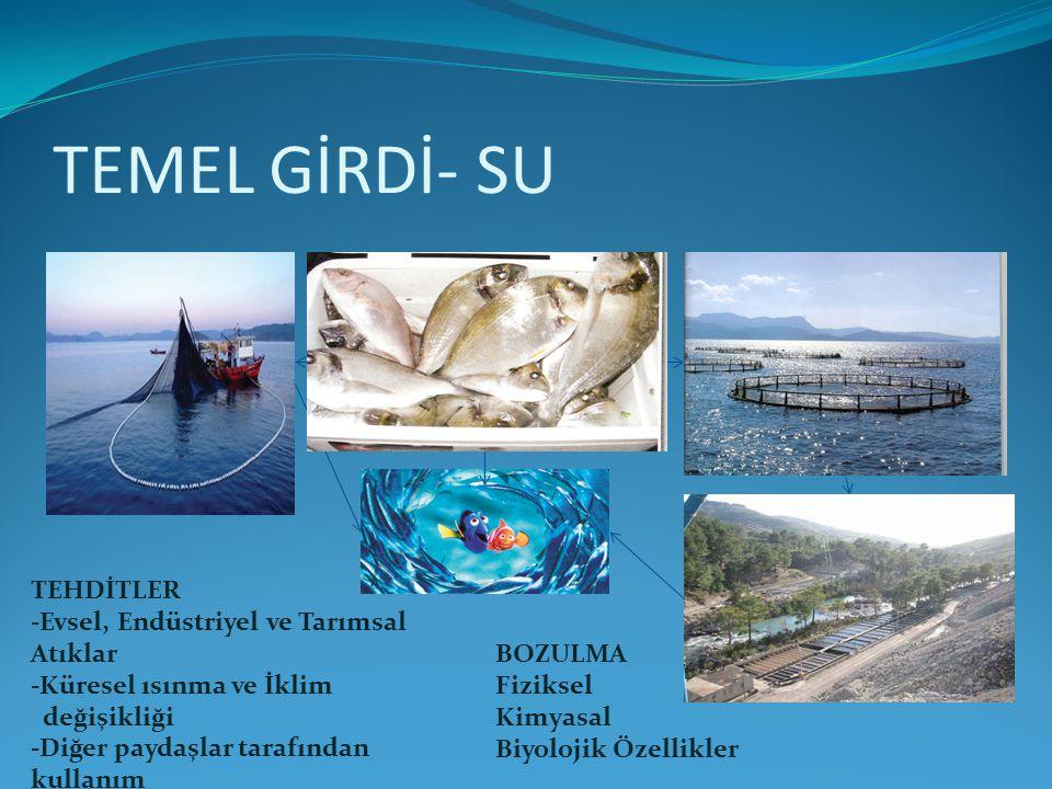 TEMEL GİRDİ- SU TEHDİTLER -Evsel, Endüstriyel ve Tarımsal Atıklar
