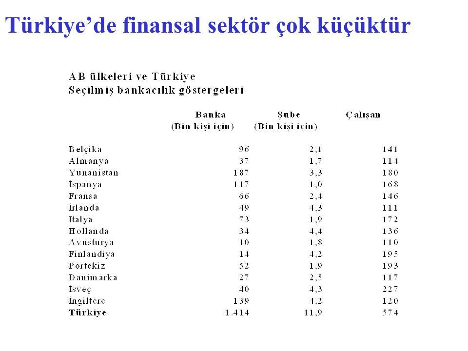 Türkiye'de finansal sektör çok küçüktür