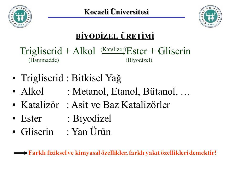 Trigliserid + Alkol Ester + Gliserin Trigliserid : Bitkisel Yağ