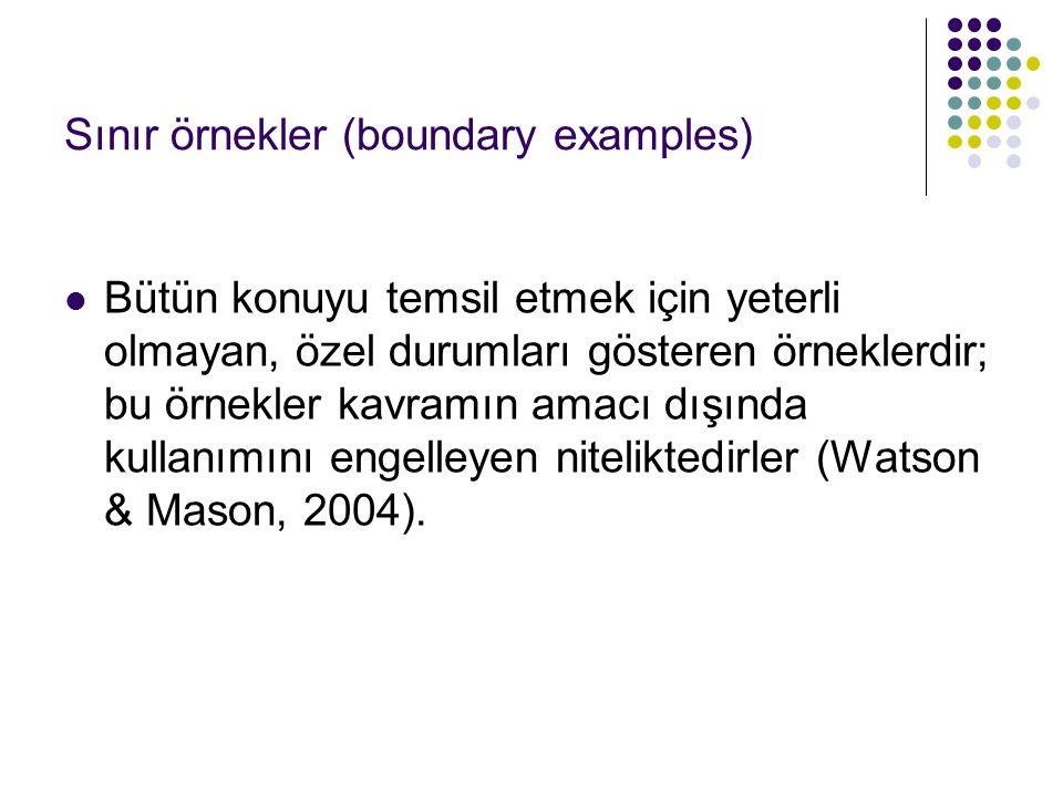 Sınır örnekler (boundary examples)