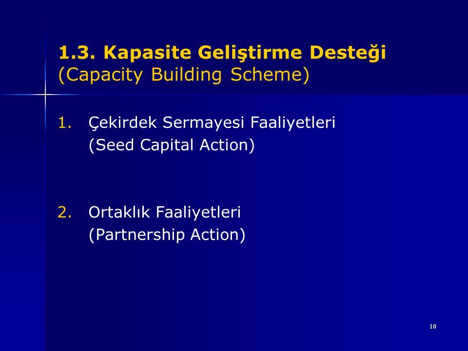 1.3. Kapasite Geliştirme Desteği (Capacity Building Scheme)
