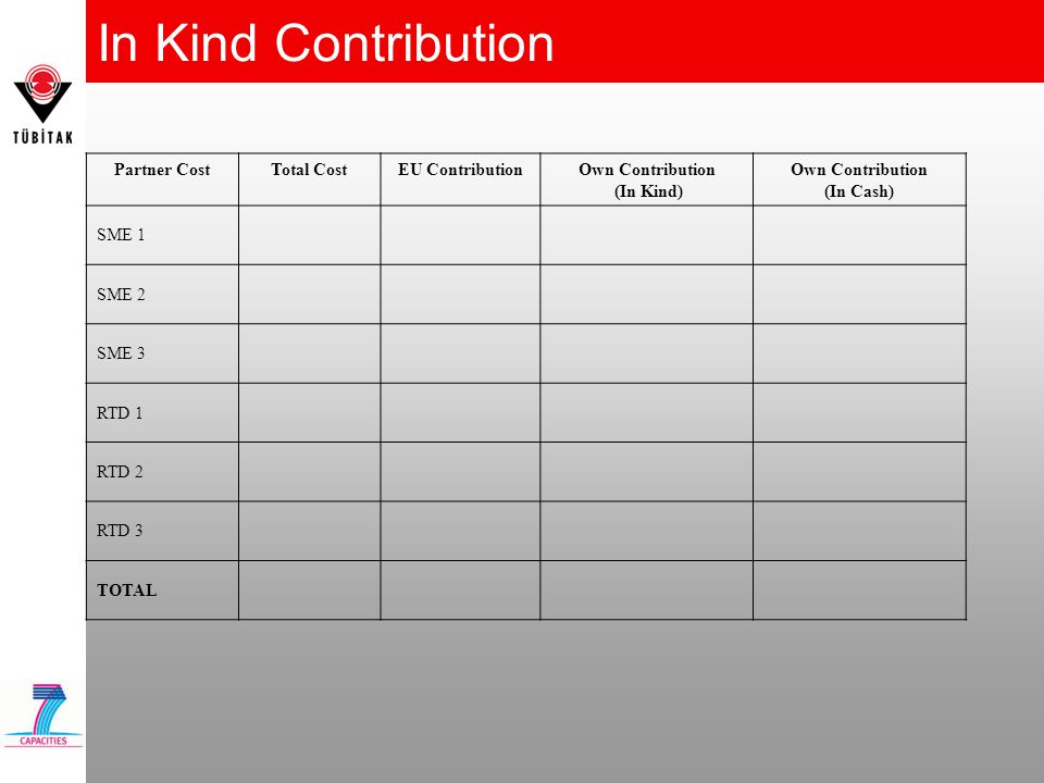 In Kind Contribution Partner Cost Total Cost EU Contribution