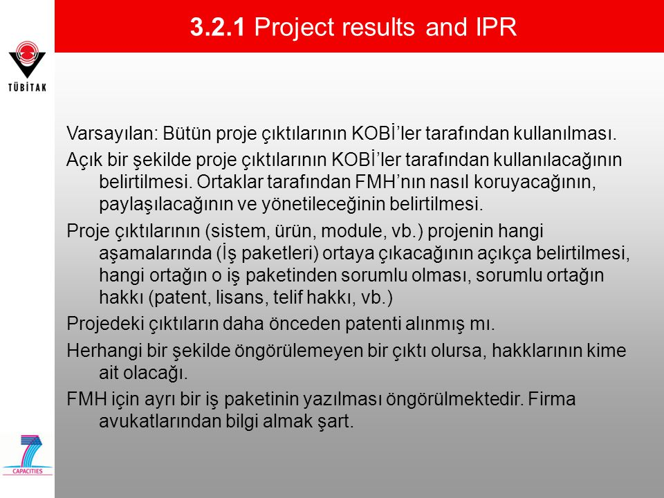 3.2.1 Project results and IPR