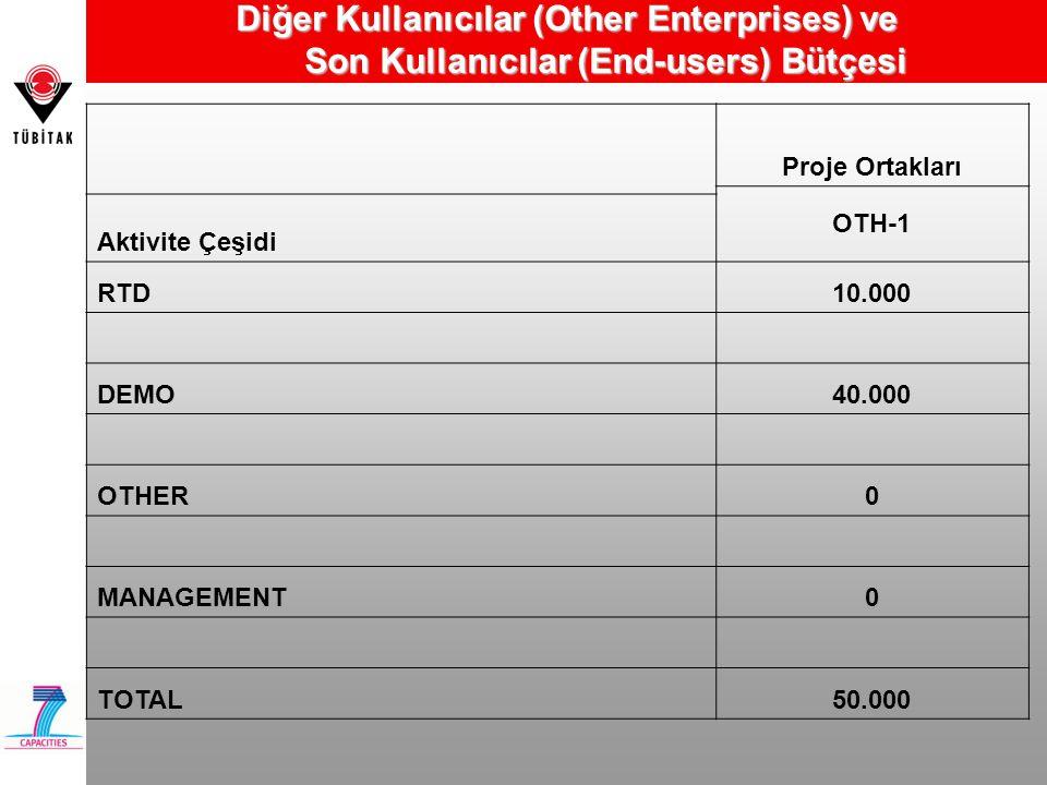 Diğer Kullanıcılar (Other Enterprises) ve Son Kullanıcılar (End-users) Bütçesi