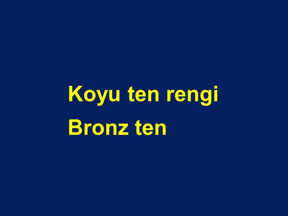 Koyu ten rengi Bronz ten