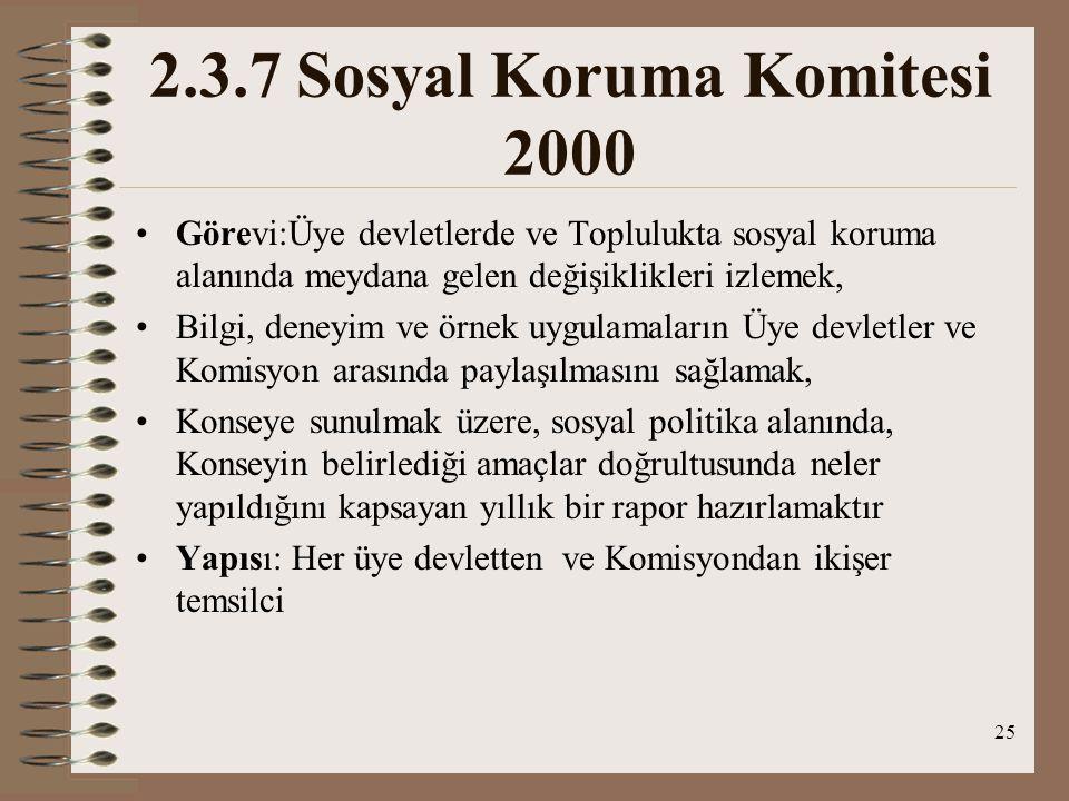 2.3.7 Sosyal Koruma Komitesi 2000