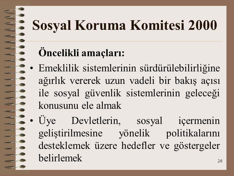 Sosyal Koruma Komitesi 2000