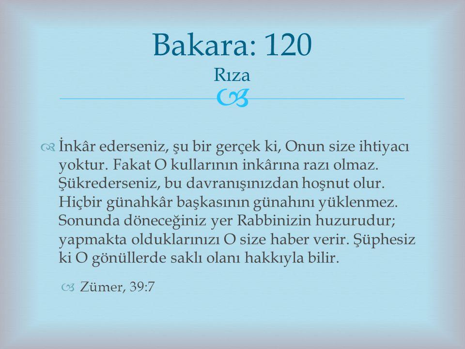 Bakara: 120 Rıza