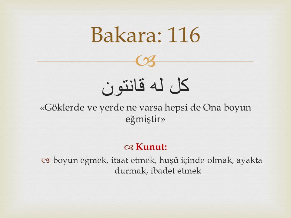 «Göklerde ve yerde ne varsa hepsi de Ona boyun eğmiştir»