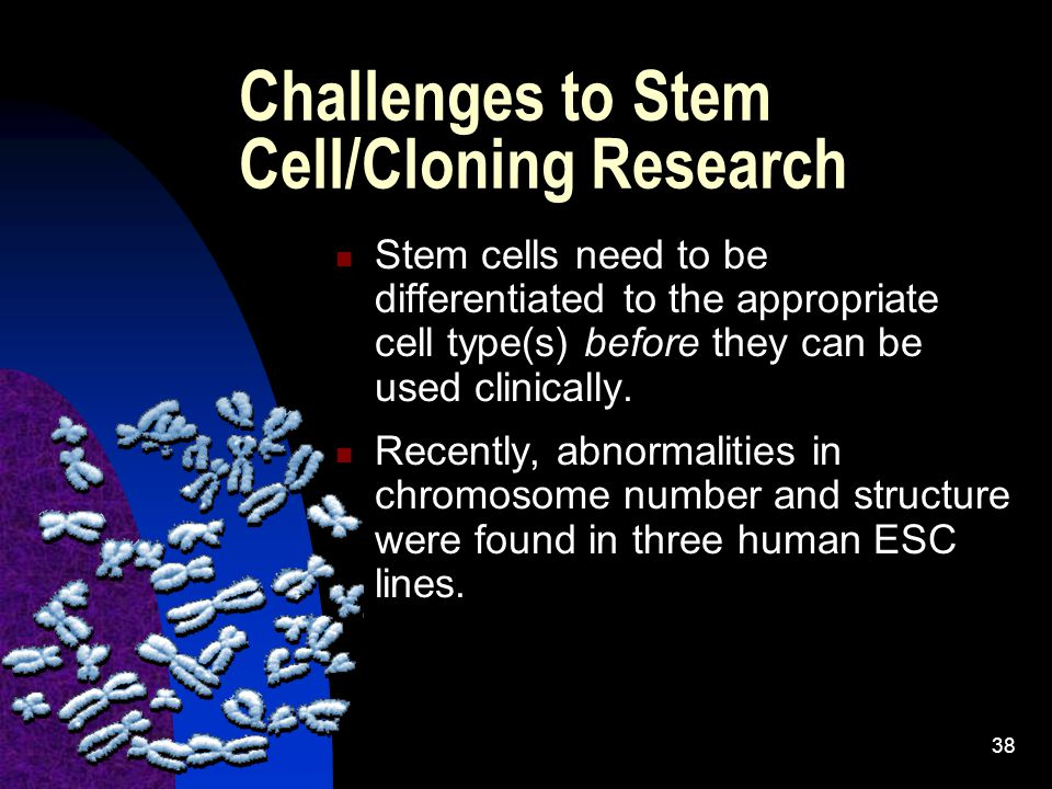 Challenges to Stem Cell/Cloning Research