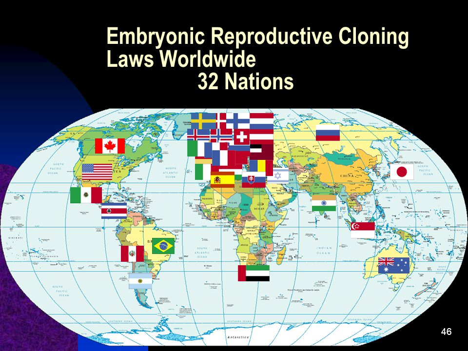 Embryonic Reproductive Cloning Laws Worldwide 32 Nations