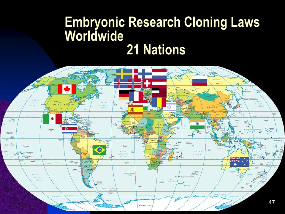 Embryonic Research Cloning Laws Worldwide 21 Nations