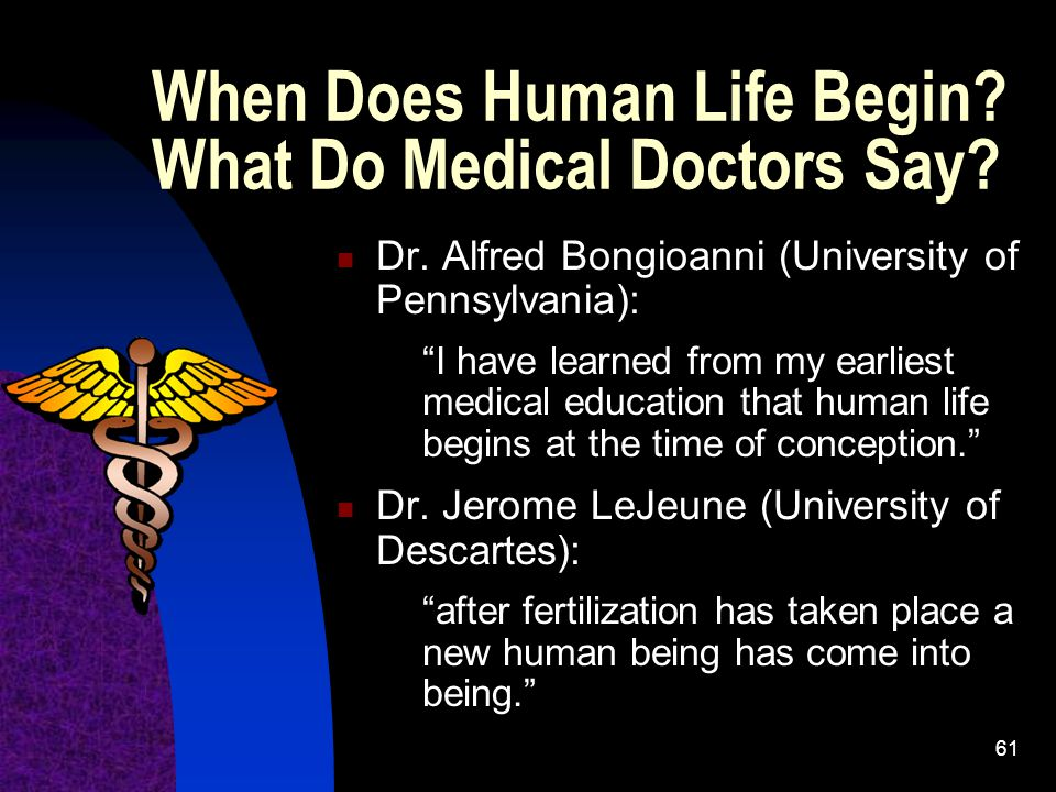 When Does Human Life Begin What Do Medical Doctors Say