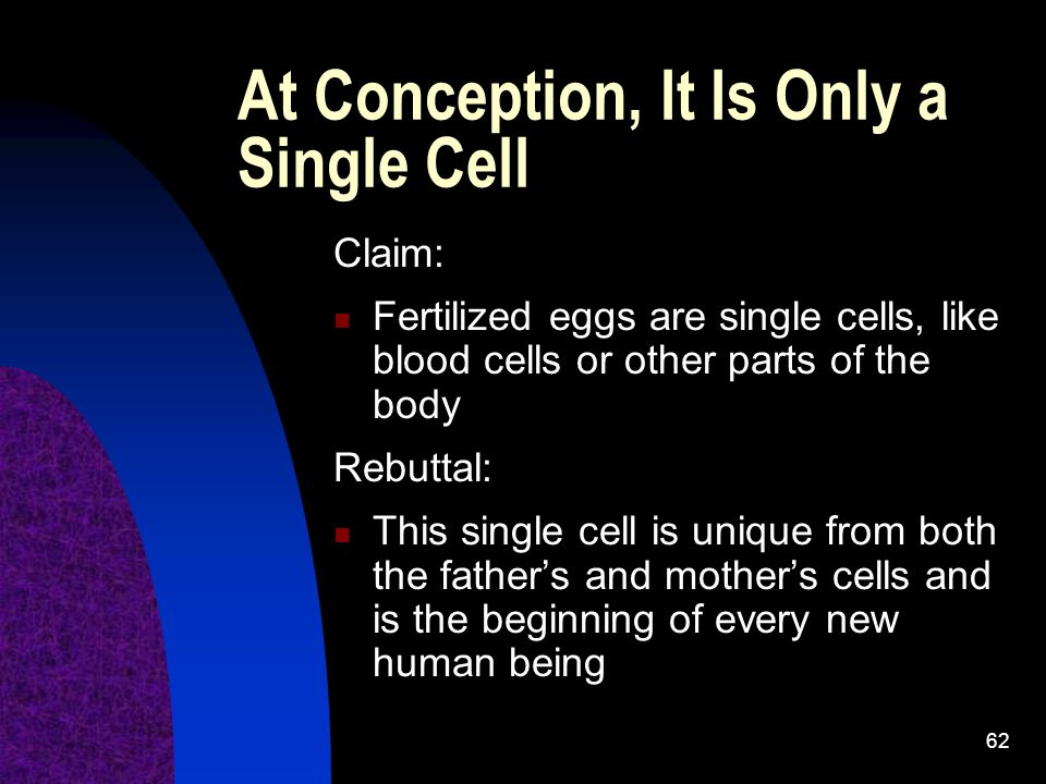 At Conception, It Is Only a Single Cell