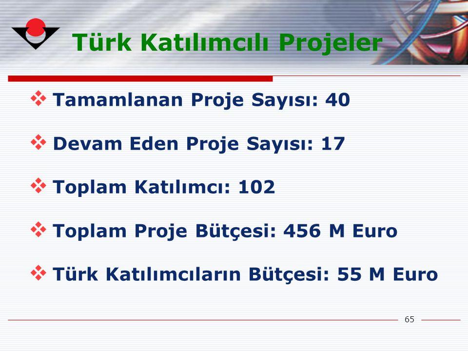 Türk Katılımcılı Projeler