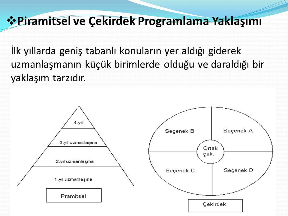 Piramitsel ve Çekirdek Programlama Yaklaşımı
