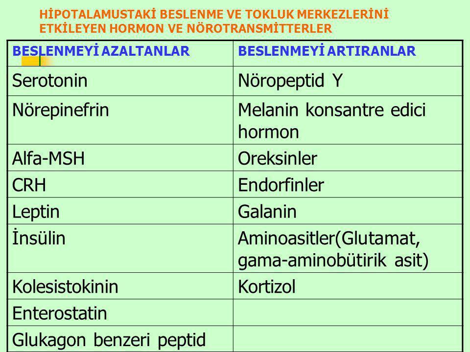 Melanin konsantre edici hormon Alfa-MSH Oreksinler CRH Endorfinler
