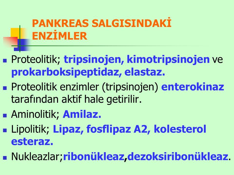 PANKREAS SALGISINDAKİ ENZİMLER