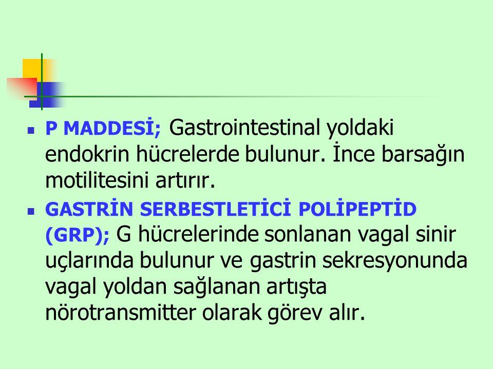 P MADDESİ; Gastrointestinal yoldaki endokrin hücrelerde bulunur