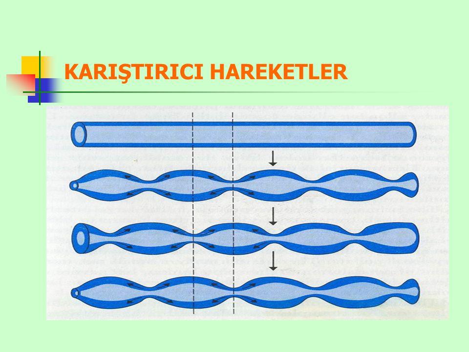 KARIŞTIRICI HAREKETLER