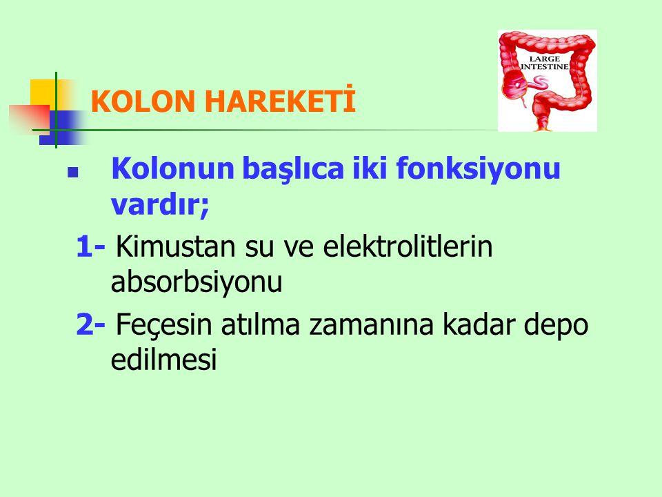 KOLON HAREKETİ Kolonun başlıca iki fonksiyonu vardır; 1- Kimustan su ve elektrolitlerin absorbsiyonu.