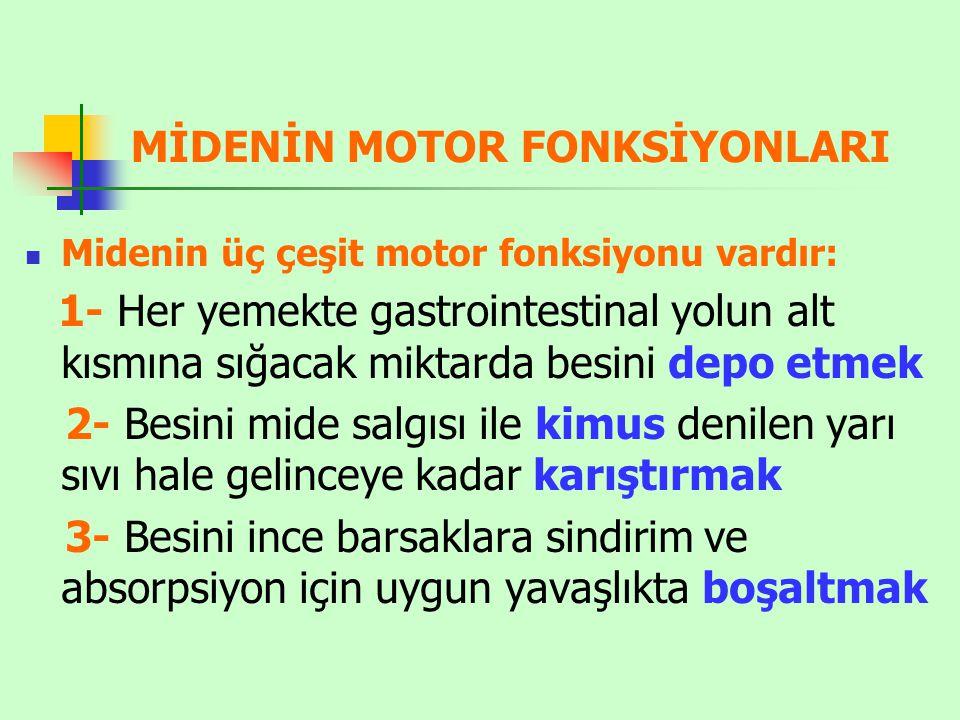 MİDENİN MOTOR FONKSİYONLARI