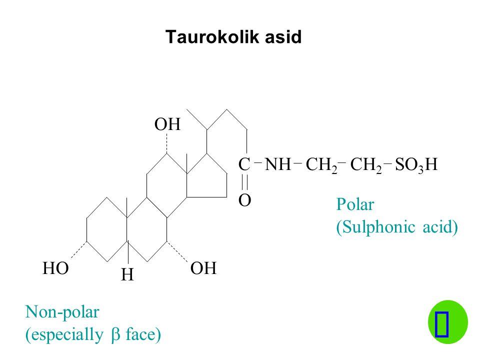 ü Taurokolik asid OH C NH CH2 CH2 SO3H O Polar (Sulphonic acid) HO OH