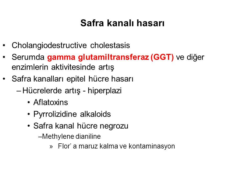 Safra kanalı hasarı Cholangiodestructive cholestasis