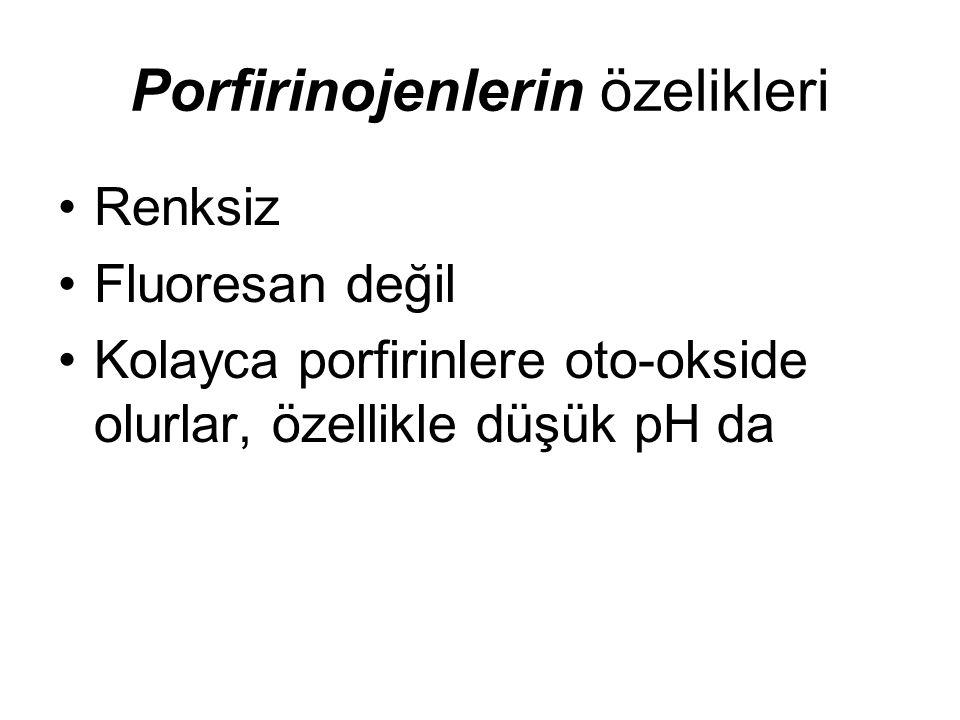 Porfirinojenlerin özelikleri