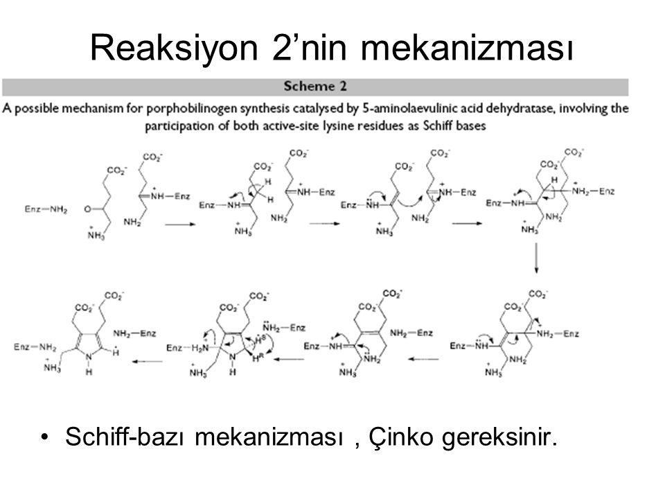 Reaksiyon 2'nin mekanizması