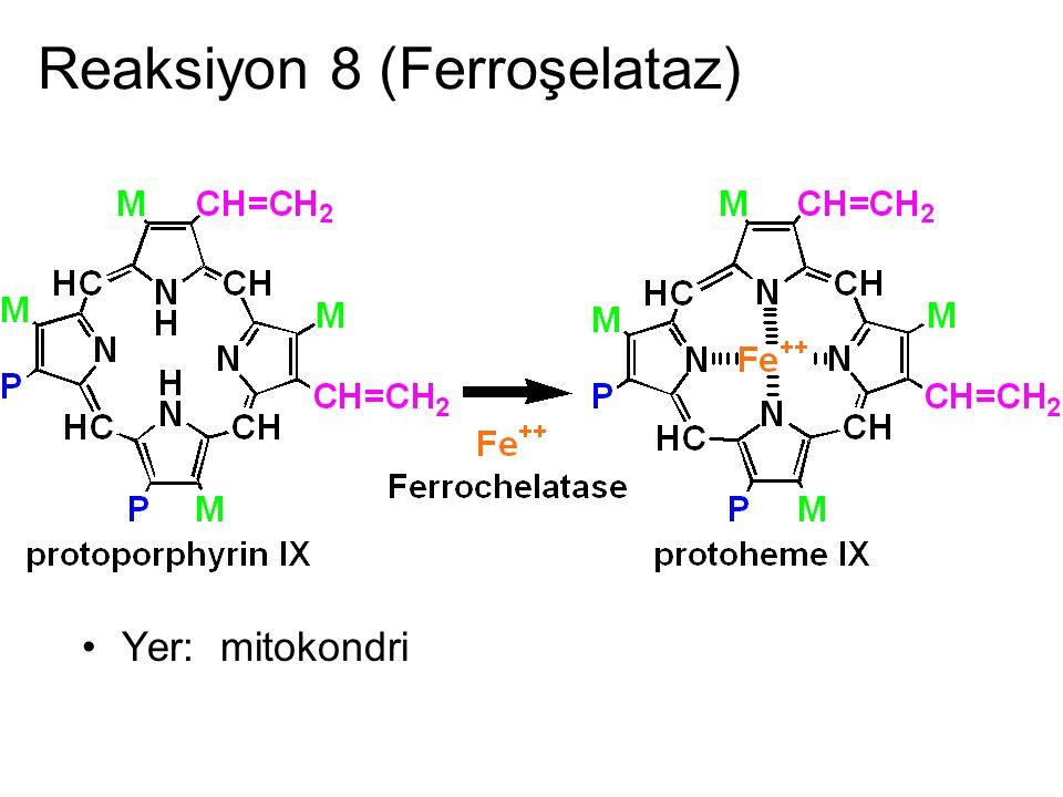 Reaksiyon 8 (Ferroşelataz)