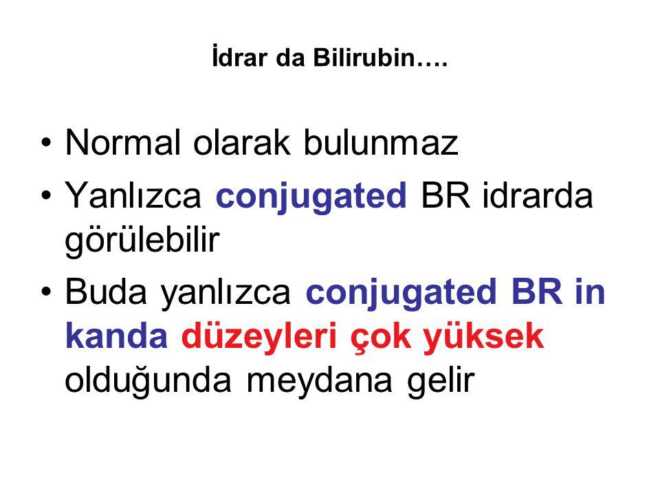 Normal olarak bulunmaz Yanlızca conjugated BR idrarda görülebilir