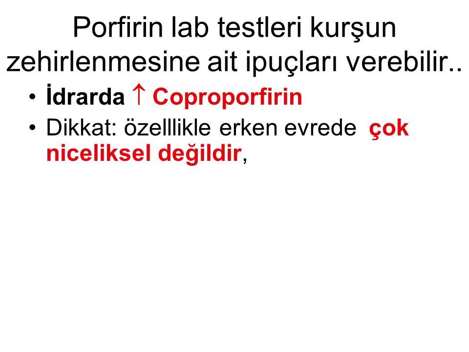 Porfirin lab testleri kurşun zehirlenmesine ait ipuçları verebilir..