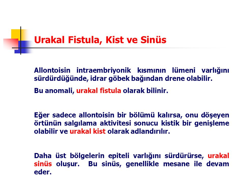 Urakal Fistula, Kist ve Sinüs