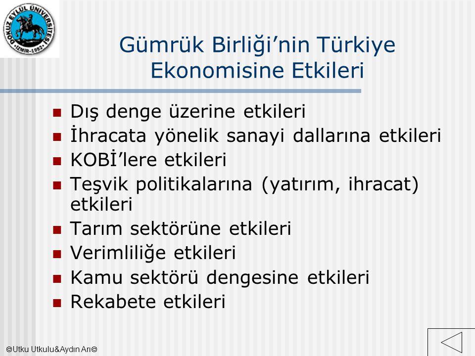 Gümrük Birliği'nin Türkiye Ekonomisine Etkileri