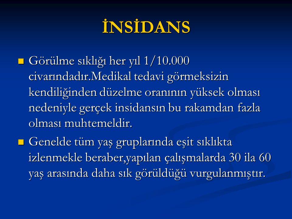 İNSİDANS