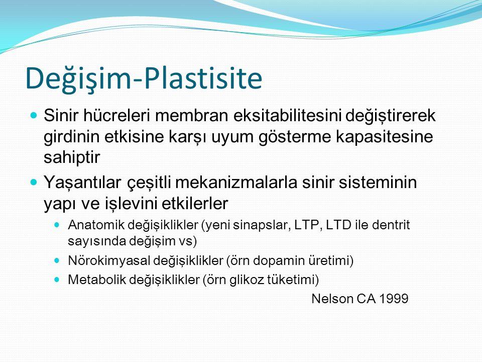 Değişim-Plastisite Sinir hücreleri membran eksitabilitesini değiştirerek girdinin etkisine karşı uyum gösterme kapasitesine sahiptir.