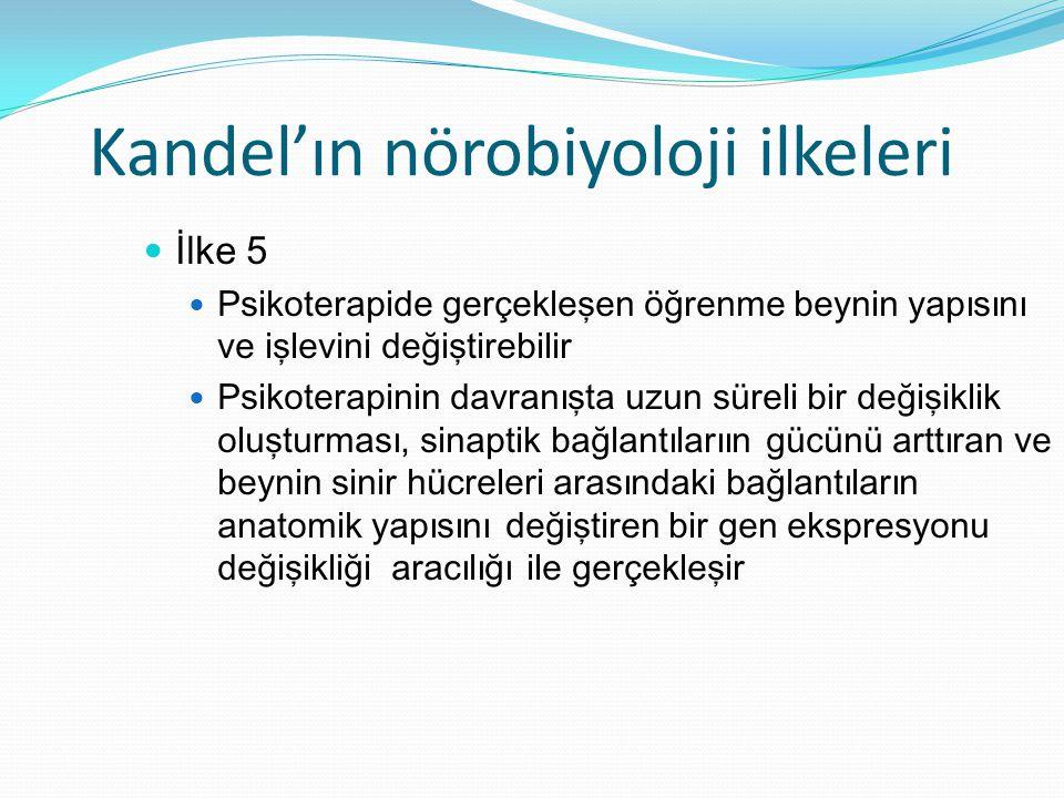 Kandel'ın nörobiyoloji ilkeleri
