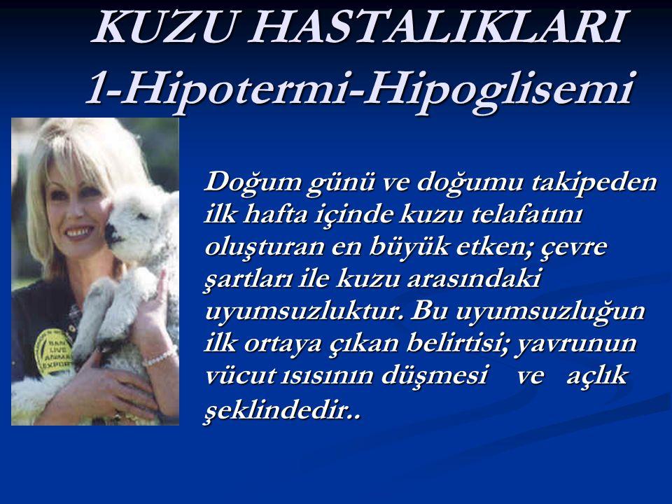 KUZU HASTALIKLARI 1-Hipotermi-Hipoglisemi