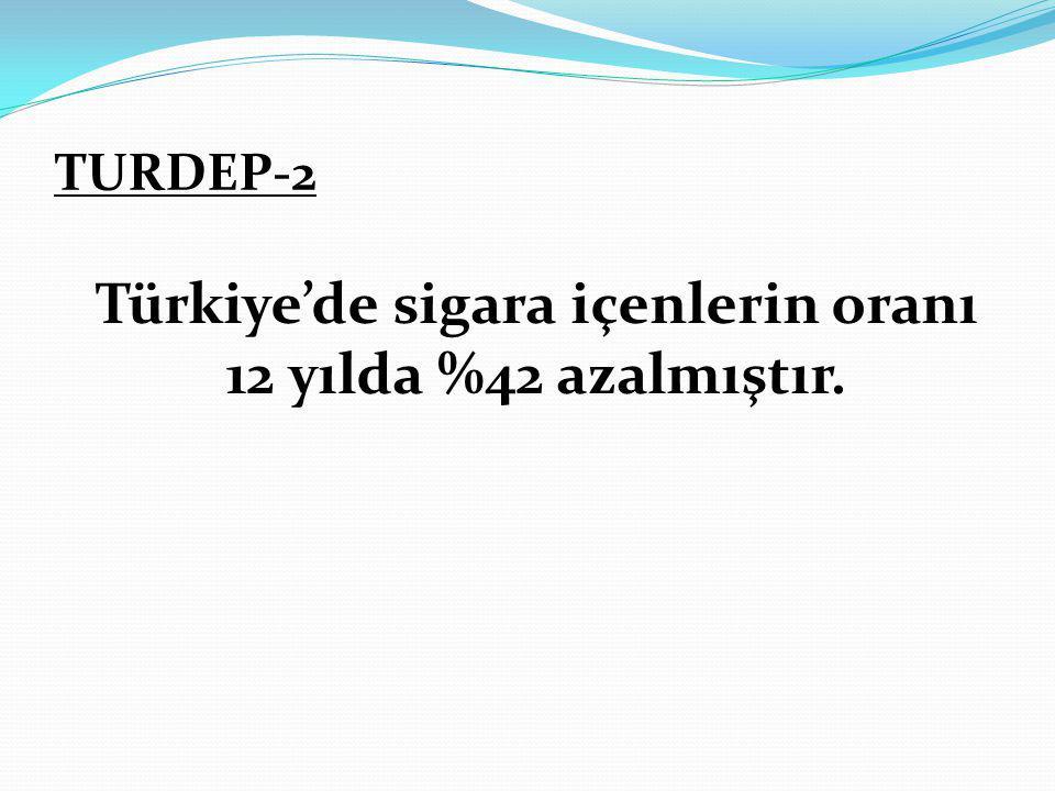Türkiye'de sigara içenlerin oranı 12 yılda %42 azalmıştır.
