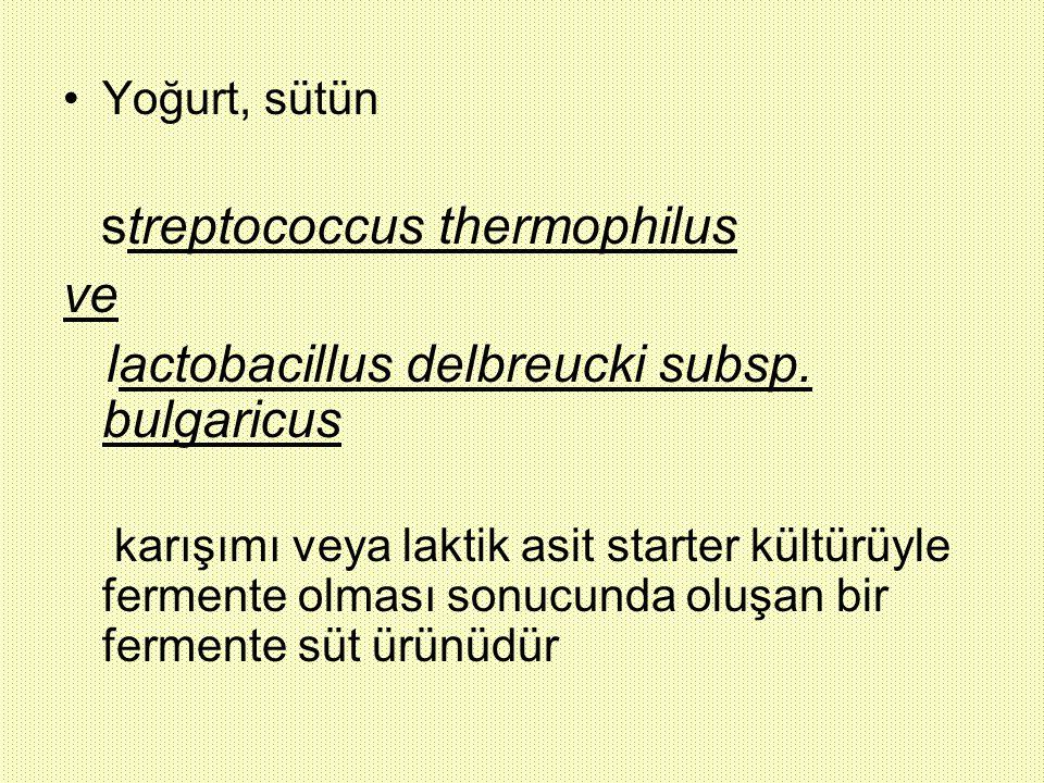 lactobacillus delbreucki subsp. bulgaricus
