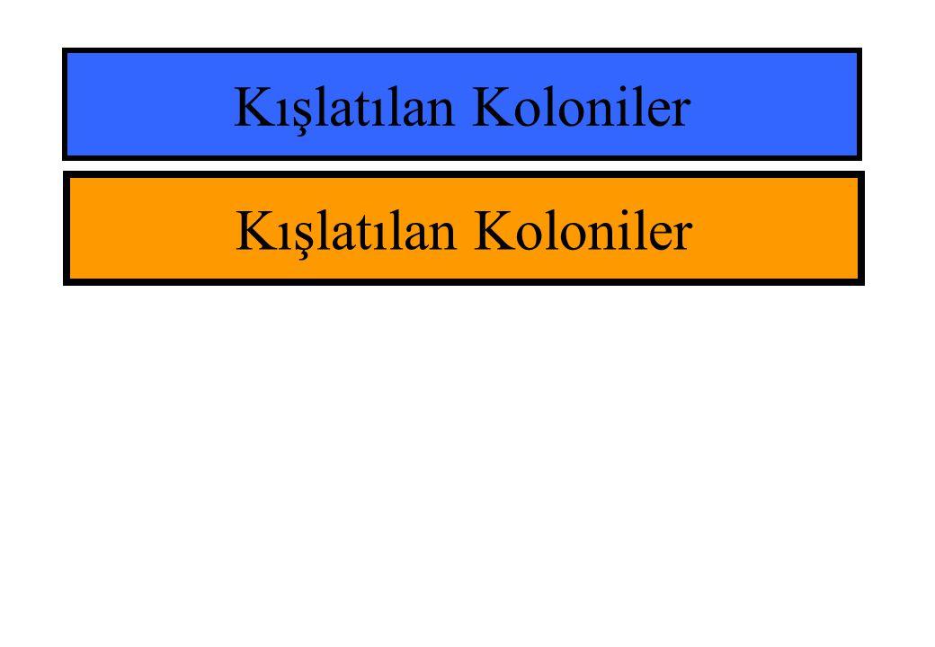 Kışlatılan Koloniler Kışlatılan Koloniler
