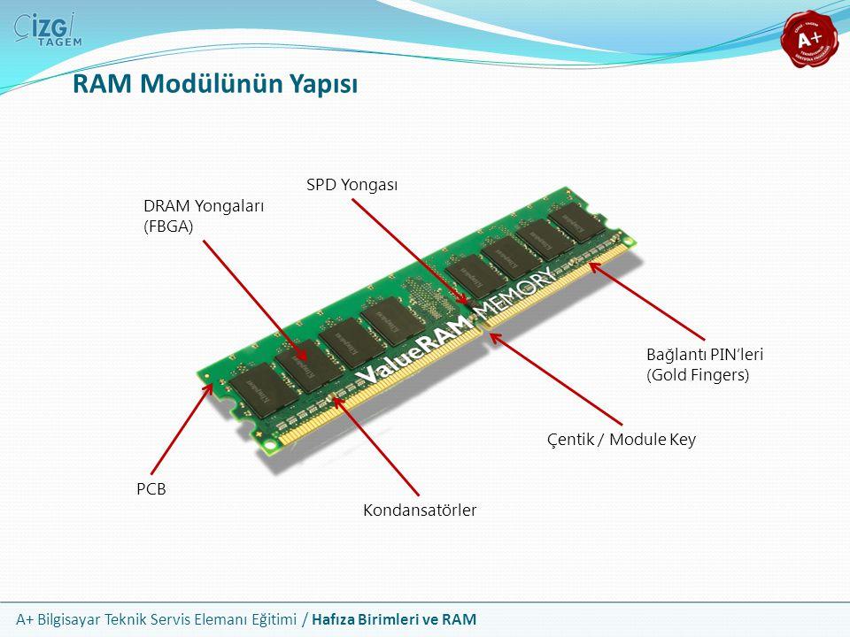 RAM Modülünün Yapısı SPD Yongası DRAM Yongaları (FBGA)