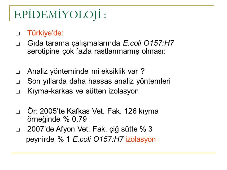 EPİDEMİYOLOJİ : Türkiye'de: