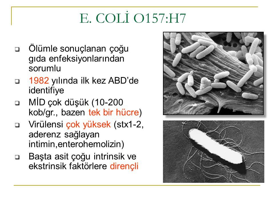 E. COLİ O157:H7 Ölümle sonuçlanan çoğu gıda enfeksiyonlarından sorumlu