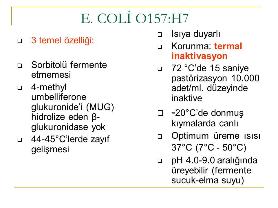 E. COLİ O157:H7 -20°C'de donmuş kıymalarda canlı Isıya duyarlı