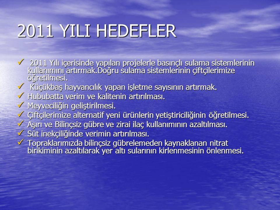 2011 YILI HEDEFLER