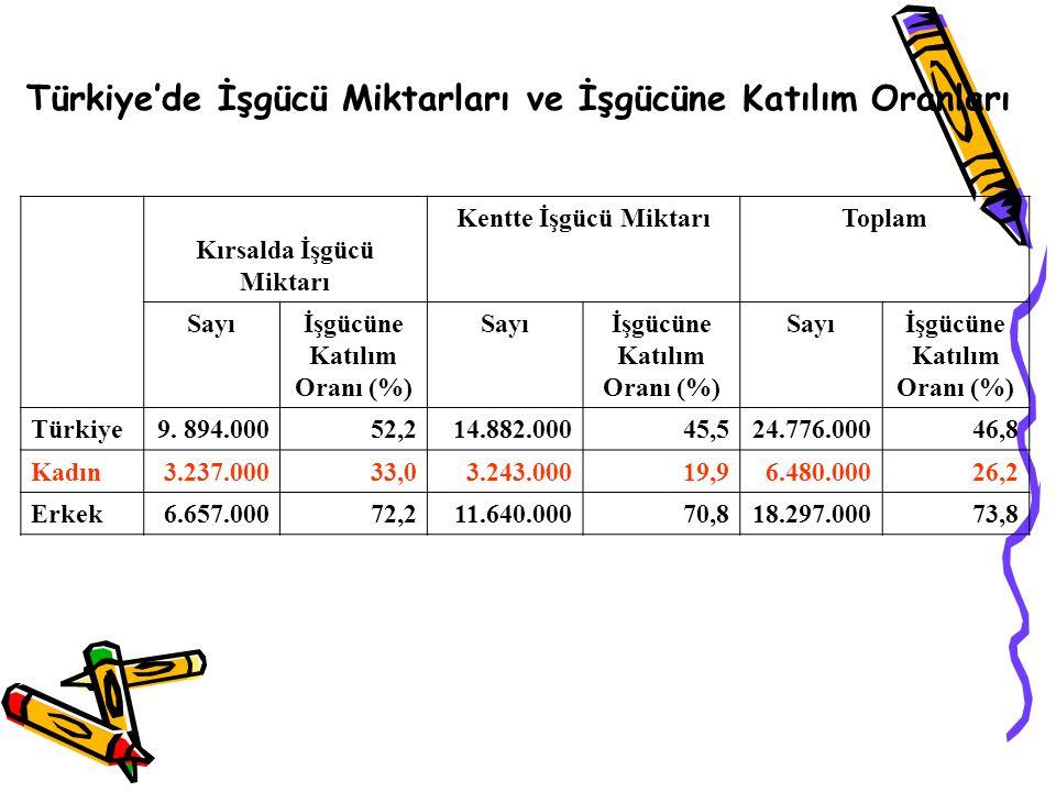 Türkiye'de İşgücü Miktarları ve İşgücüne Katılım Oranları