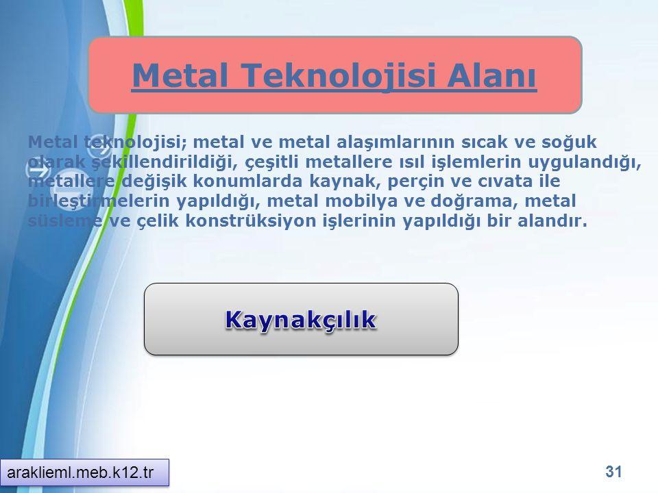Metal Teknolojisi Alanı